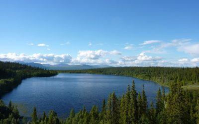 Lapony Tour