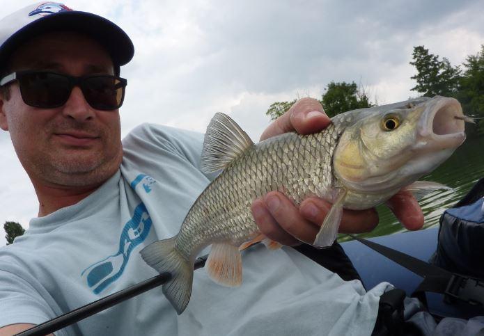 Pêche Chevaine dans la marne