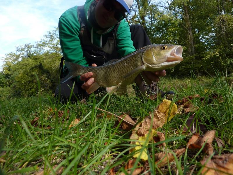 Sortie pêche chevaines 3